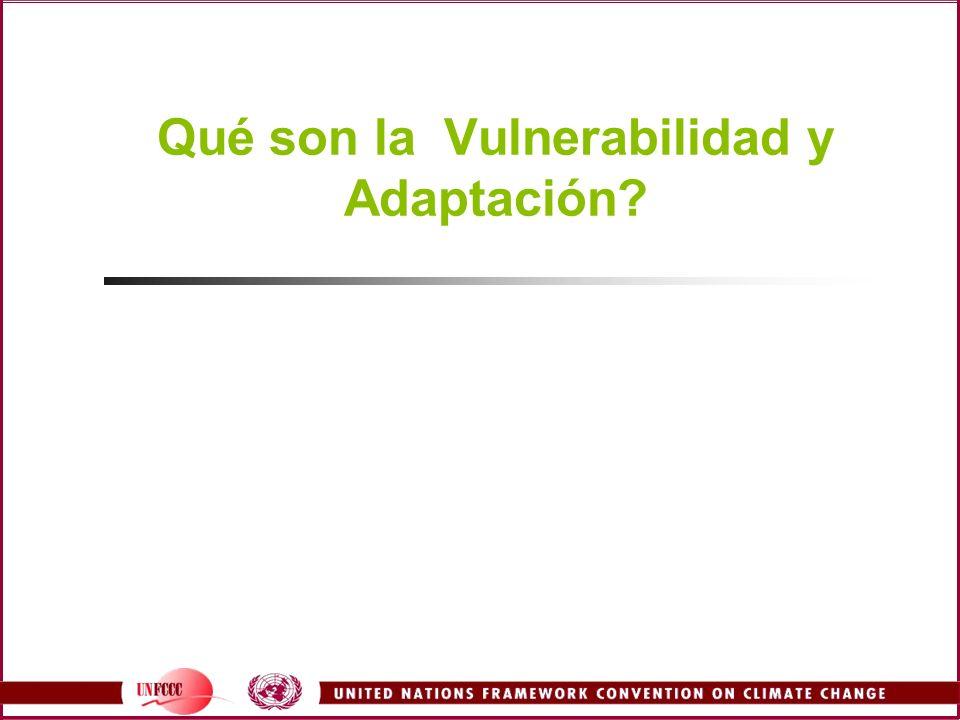 Qué son la Vulnerabilidad y Adaptación?