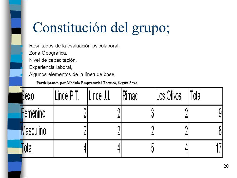 20 Constitución del grupo; n Resultados de la evaluación psicolaboral, n Zona Geográfica, n Nivel de capacitación, n Experiencia laboral, n Algunos el