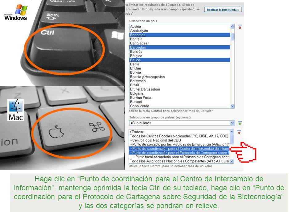 Haga clic en Punto de coordinación para el Centro de Intercambio de Información, mantenga oprimida la tecla Ctrl de su teclado, haga clic en Punto de