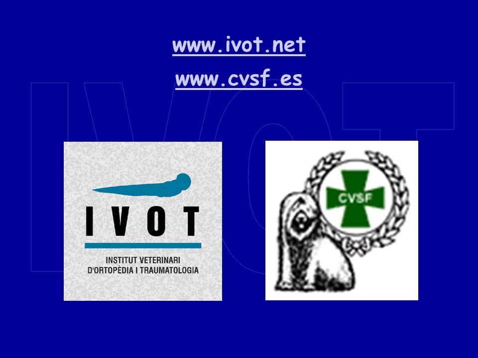 www.ivot.net www.cvsf.es