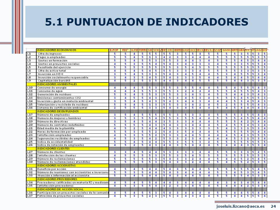 joseluis.lizcano@aeca.es 24 5.1 PUNTUACION DE INDICADORES