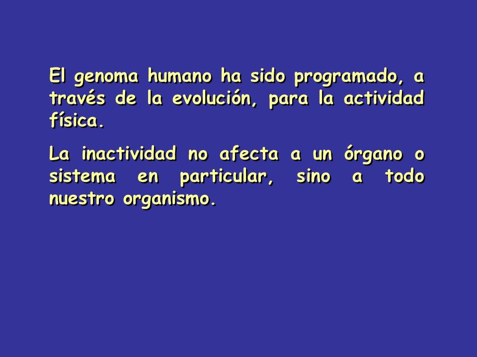 El genoma humano ha sido programado, a través de la evolución, para la actividad física. La inactividad no afecta a un órgano o sistema en particular,