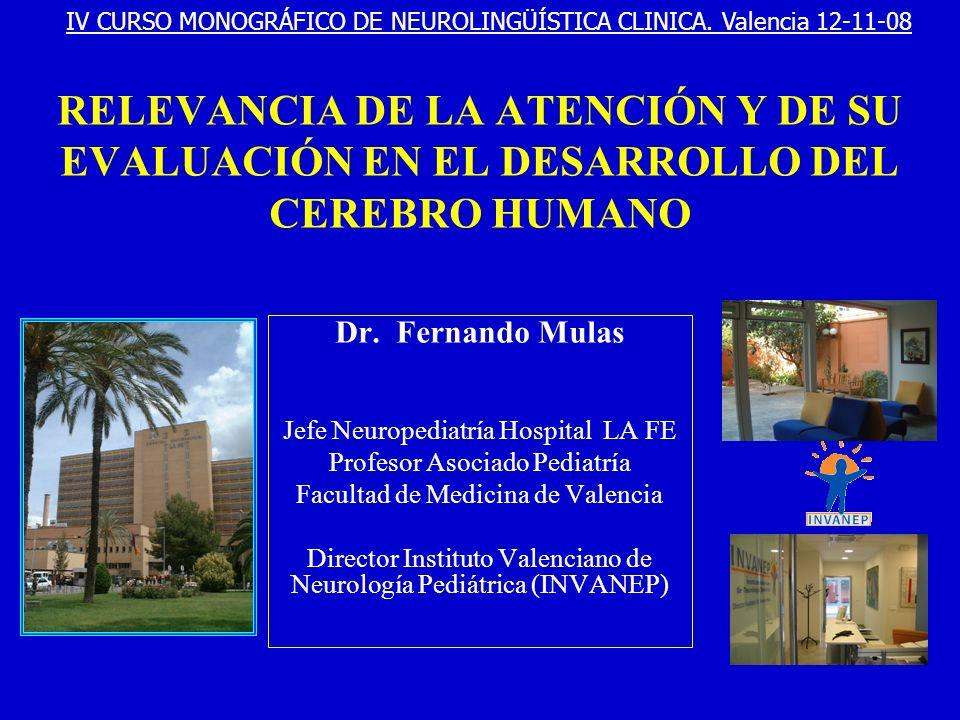 RELEVANCIA DE LA ATENCIÓN Y DE SU EVALUACIÓN EN EL DESARROLLO DEL CEREBRO HUMANO Dr. Fernando Mulas Jefe Neuropediatría Hospital LA FE Profesor Asocia