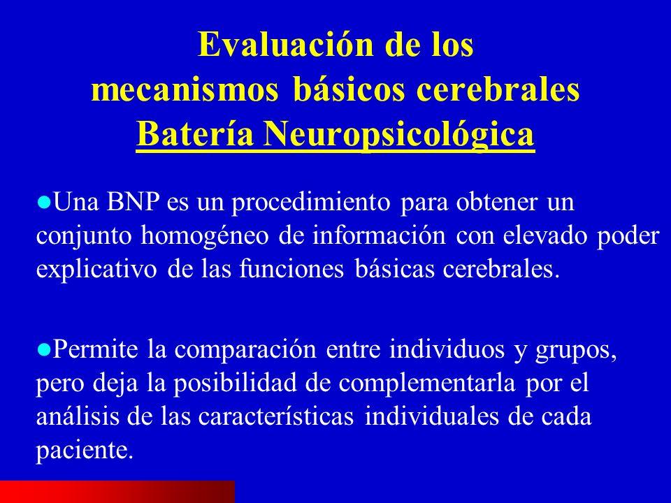 Evaluación de los mecanismos básicos cerebrales Batería Neuropsicológica Una BNP es un procedimiento para obtener un conjunto homogéneo de información