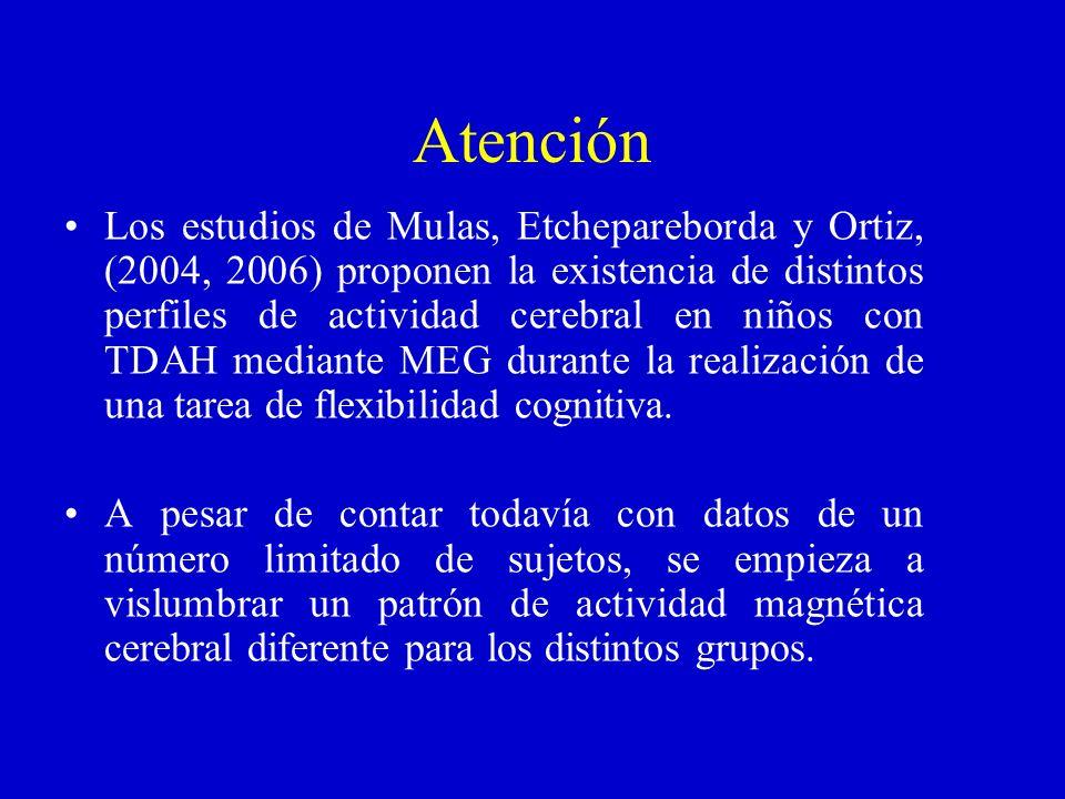 Atención Los estudios de Mulas, Etchepareborda y Ortiz, (2004, 2006) proponen la existencia de distintos perfiles de actividad cerebral en niños con T