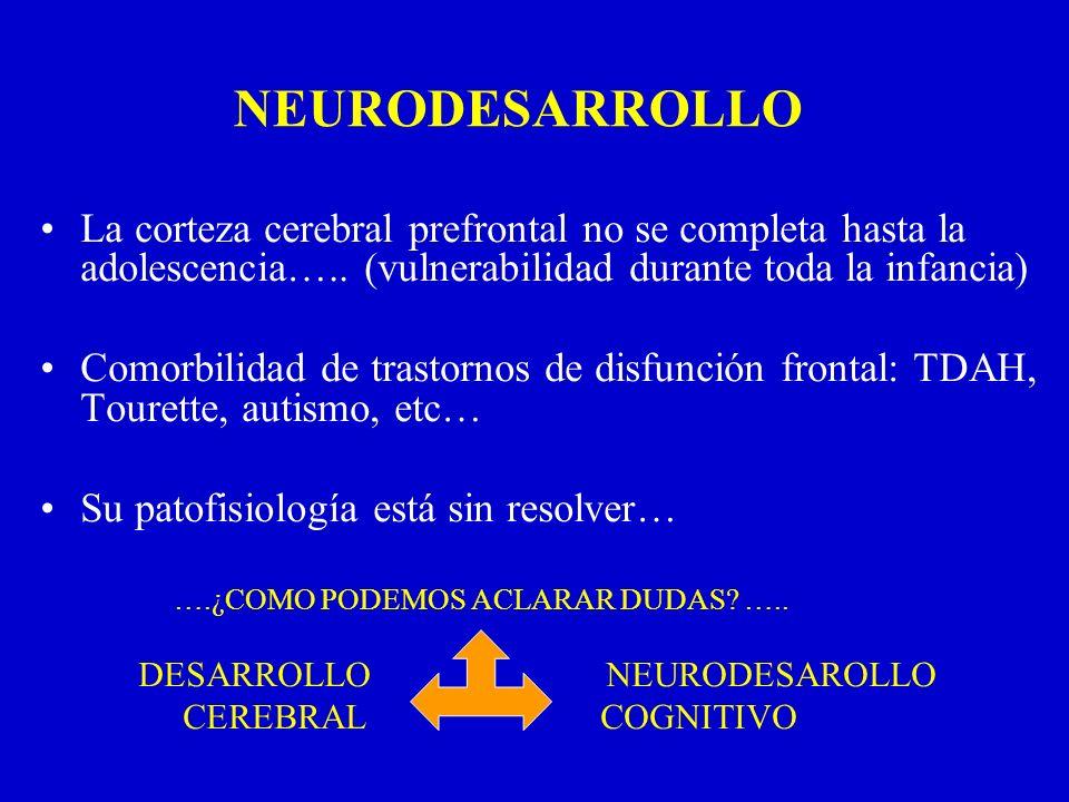 La corteza cerebral prefrontal no se completa hasta la adolescencia….. (vulnerabilidad durante toda la infancia) Comorbilidad de trastornos de disfunc
