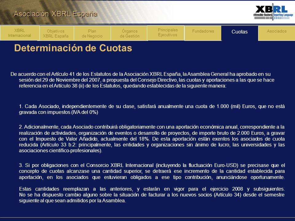 Asociación XBRL España Determinación de Cuotas Plan de Negocio Órganos de Gestión Principales Ejecutivos Fundadores Cuotas Asociados XBRL Internaciona