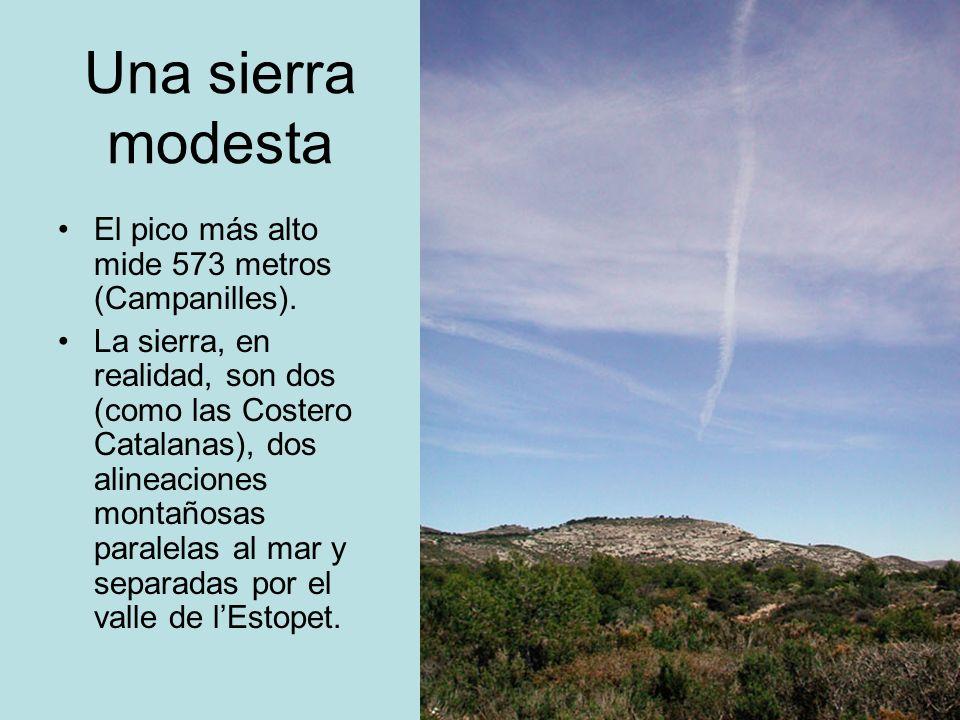 Una sierra modesta El pico más alto mide 573 metros (Campanilles). La sierra, en realidad, son dos (como las Costero Catalanas), dos alineaciones mont