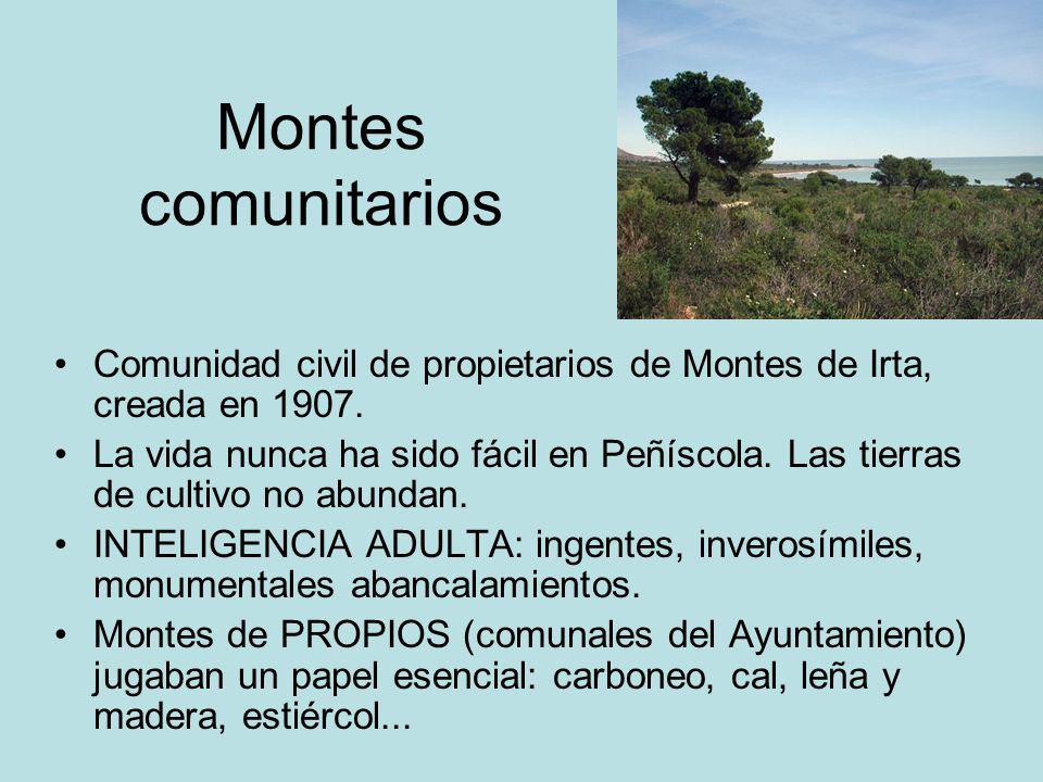Montes comunitarios Comunidad civil de propietarios de Montes de Irta, creada en 1907. La vida nunca ha sido fácil en Peñíscola. Las tierras de cultiv