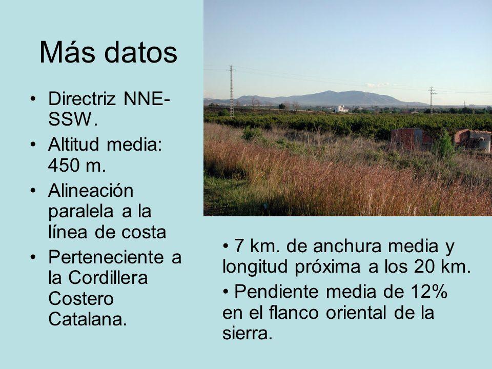 Más datos Directriz NNE- SSW. Altitud media: 450 m. Alineación paralela a la línea de costa Perteneciente a la Cordillera Costero Catalana. 7 km. de a
