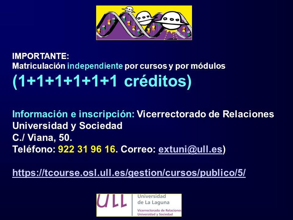 IMPORTANTE: Matriculación independiente por cursos y por módulos (1+1+1+1+1+1 créditos) Información e inscripción: Vicerrectorado de Relaciones Univer