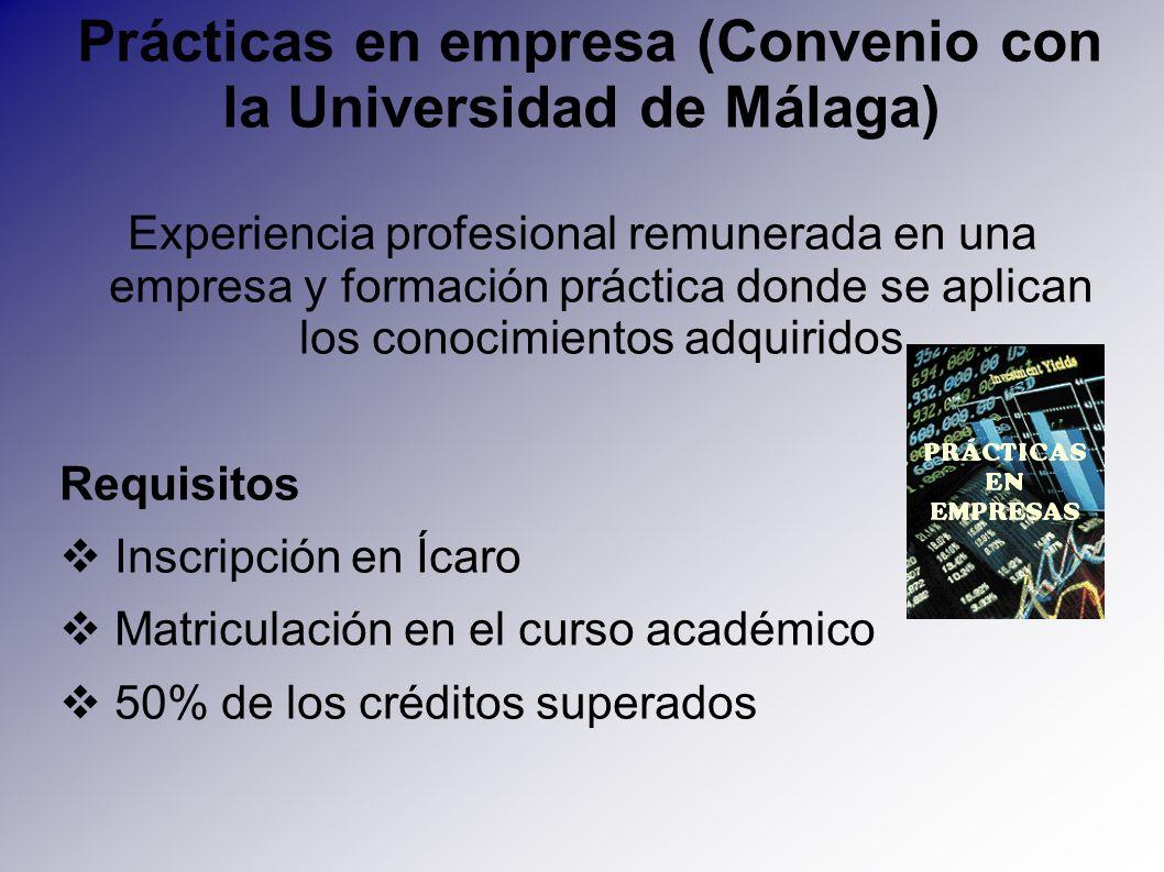 Prácticas en empresa (Convenio con la Universidad de Málaga) Experiencia profesional remunerada en una empresa y formación práctica donde se aplican l