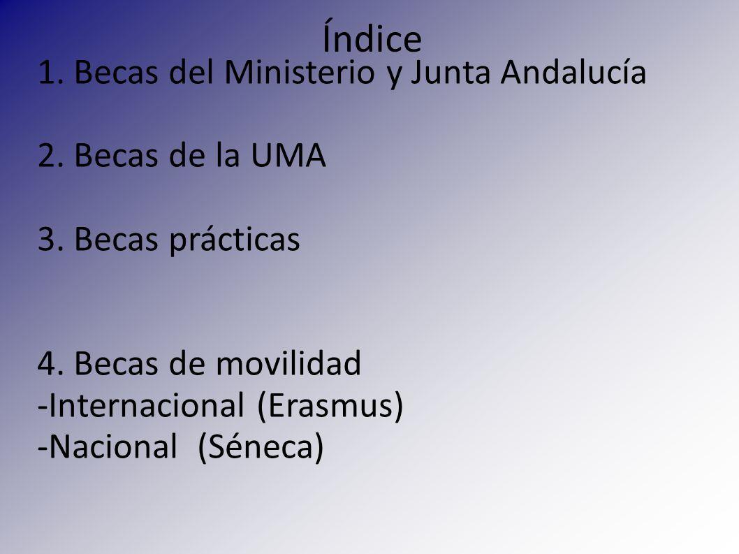 1. Becas del Ministerio y Junta Andalucía 2. Becas de la UMA 3. Becas prácticas 4. Becas de movilidad -Internacional (Erasmus) -Nacional (Séneca) Índi