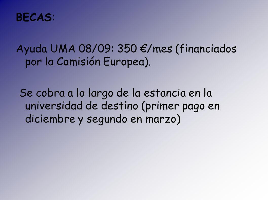 BECAS: Ayuda UMA 08/09: 350 /mes (financiados por la Comisión Europea). Se cobra a lo largo de la estancia en la universidad de destino (primer pago e