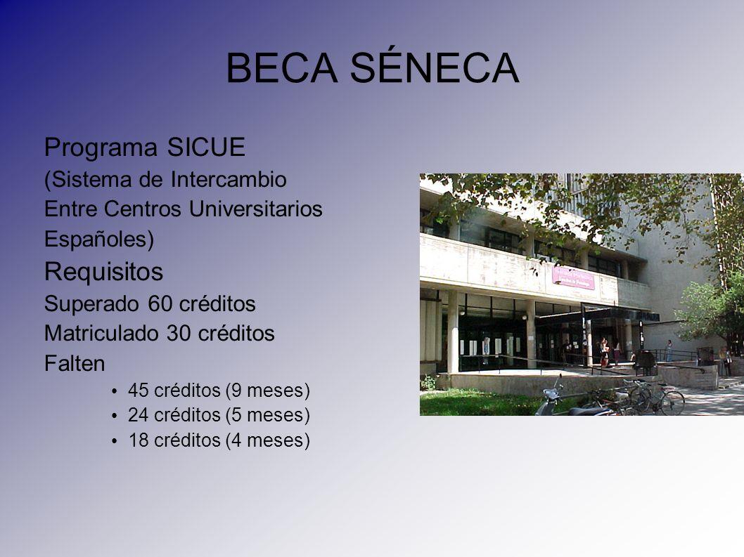 BECA SÉNECA Programa SICUE (Sistema de Intercambio Entre Centros Universitarios Españoles) Requisitos Superado 60 créditos Matriculado 30 créditos Fal