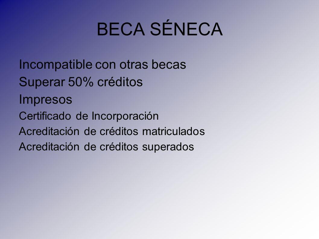 BECA SÉNECA Incompatible con otras becas Superar 50% créditos Impresos Certificado de Incorporación Acreditación de créditos matriculados Acreditación
