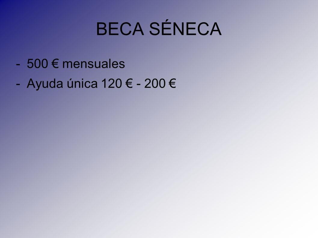 BECA SÉNECA -500 mensuales -Ayuda única 120 - 200