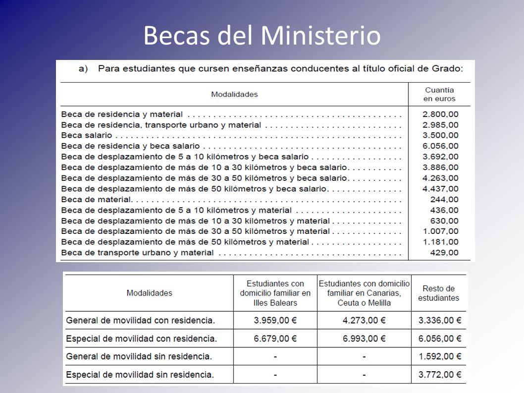 Beca de la Junta de Andalucía Requisitos de matrícula: Los mismos de la beca del Ministerio Requisitos académicos: -Superar el 50% de los créditos Requisitos económicos: Importe de ayuda: Equivalente al pagado en concepto de precios por servicios académicos con un límite de 700