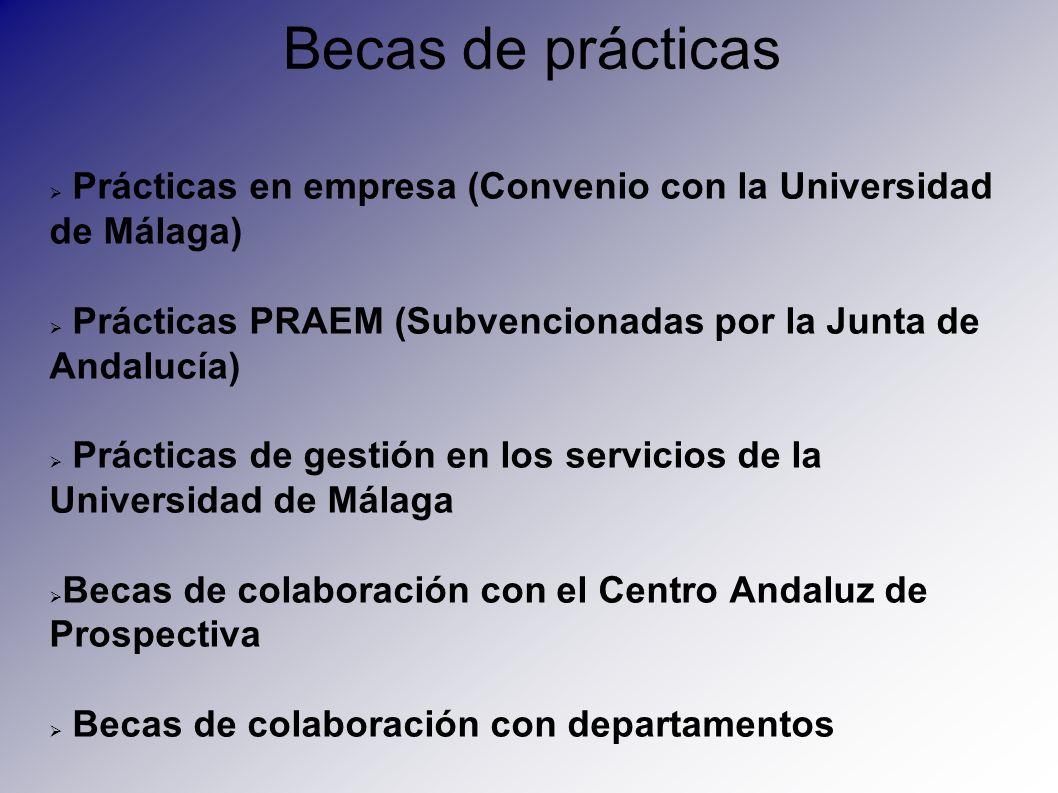Becas de prácticas Prácticas en empresa (Convenio con la Universidad de Málaga) Prácticas PRAEM (Subvencionadas por la Junta de Andalucía) Prácticas d