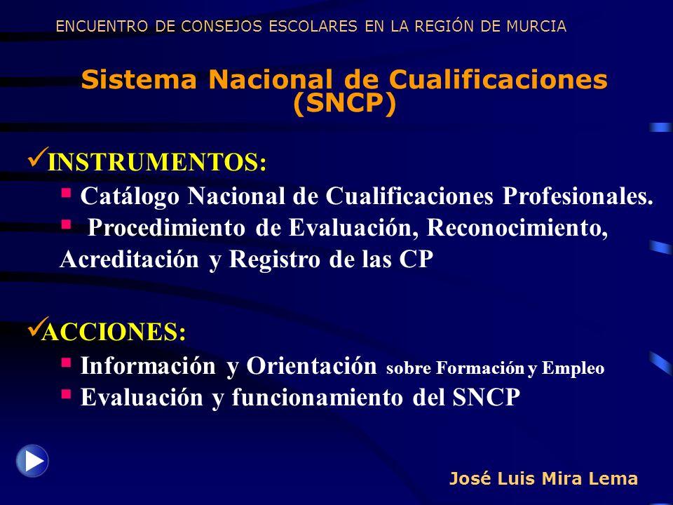 José Luis Mira Lema Sistema Nacional de Cualificaciones (SNCP) ENCUENTRO DE CONSEJOS ESCOLARES EN LA REGIÓN DE MURCIA INSTRUMENTOS: Catálogo Nacional