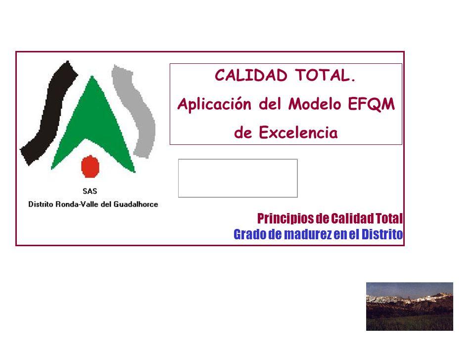 CALIDAD TOTAL. Aplicación del Modelo EFQM de Excelencia Principios de Calidad Total Grado de madurez en el Distrito