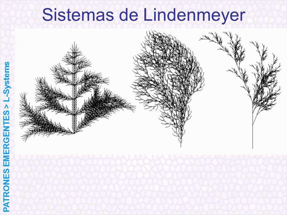 Sistemas de Lindenmeyer PATRONES EMERGENTES > L-Systems