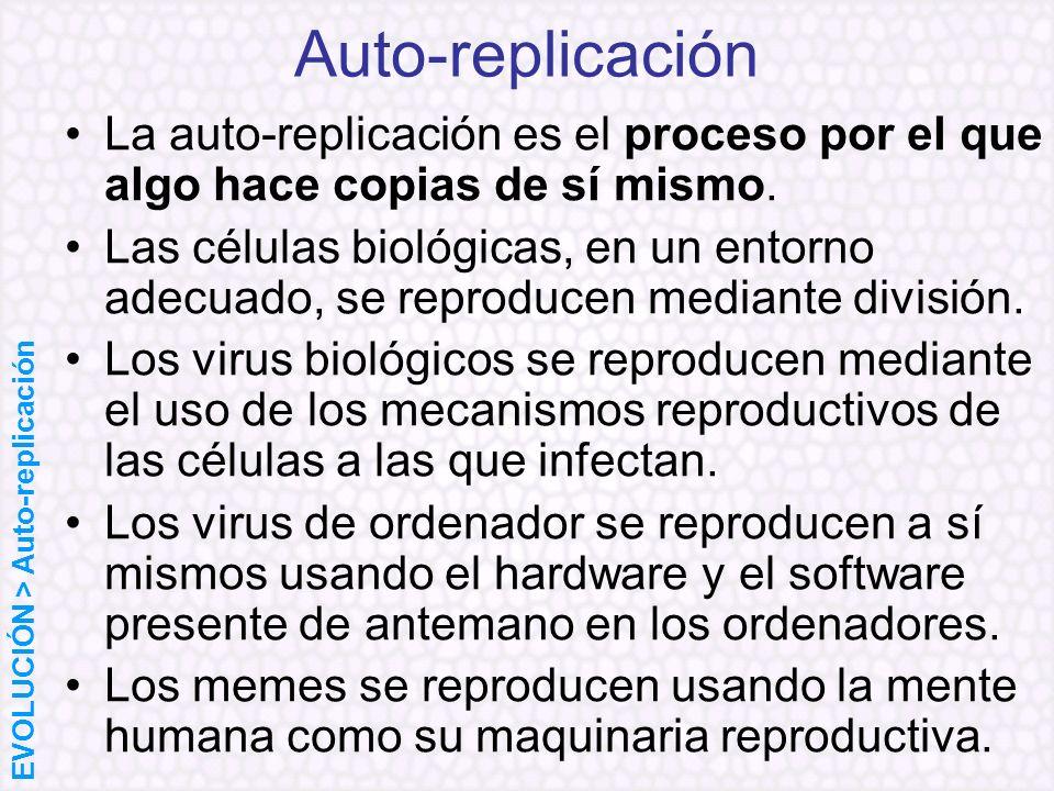 La auto-replicación es el proceso por el que algo hace copias de sí mismo. Las células biológicas, en un entorno adecuado, se reproducen mediante divi