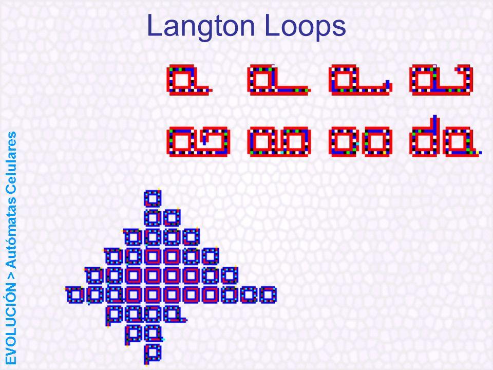 Langton Loops EVOLUCIÓN > Autómatas Celulares