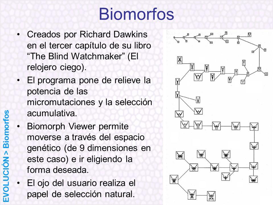 Biomorfos Creados por Richard Dawkins en el tercer capítulo de su libro The Blind Watchmaker (El relojero ciego). El programa pone de relieve la poten