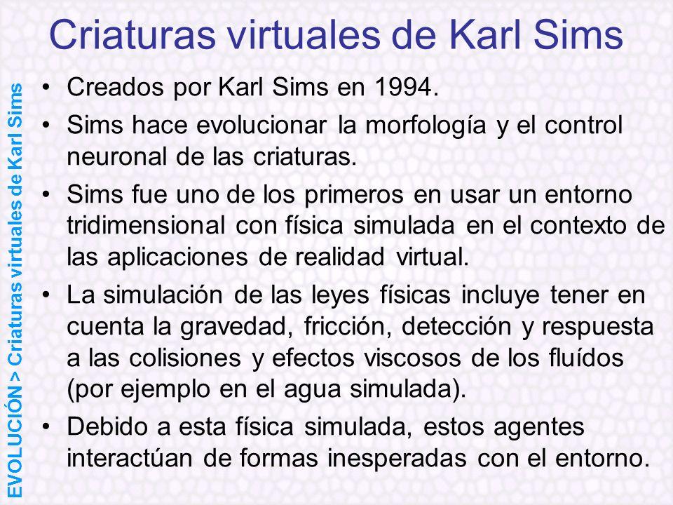 Criaturas virtuales de Karl Sims Creados por Karl Sims en 1994. Sims hace evolucionar la morfología y el control neuronal de las criaturas. Sims fue u
