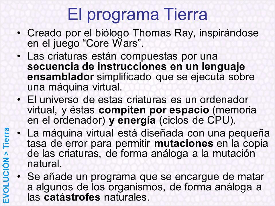 El programa Tierra Creado por el biólogo Thomas Ray, inspirándose en el juego Core Wars. Las criaturas están compuestas por una secuencia de instrucci