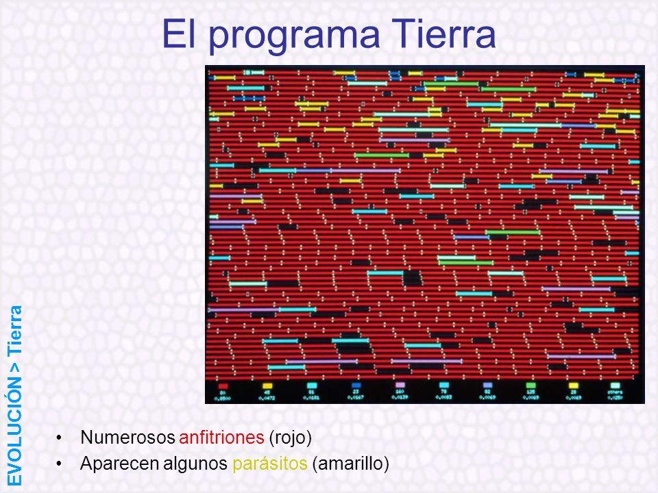 El programa Tierra Numerosos anfitriones (rojo) Aparecen algunos parásitos (amarillo) EVOLUCIÓN > Tierra