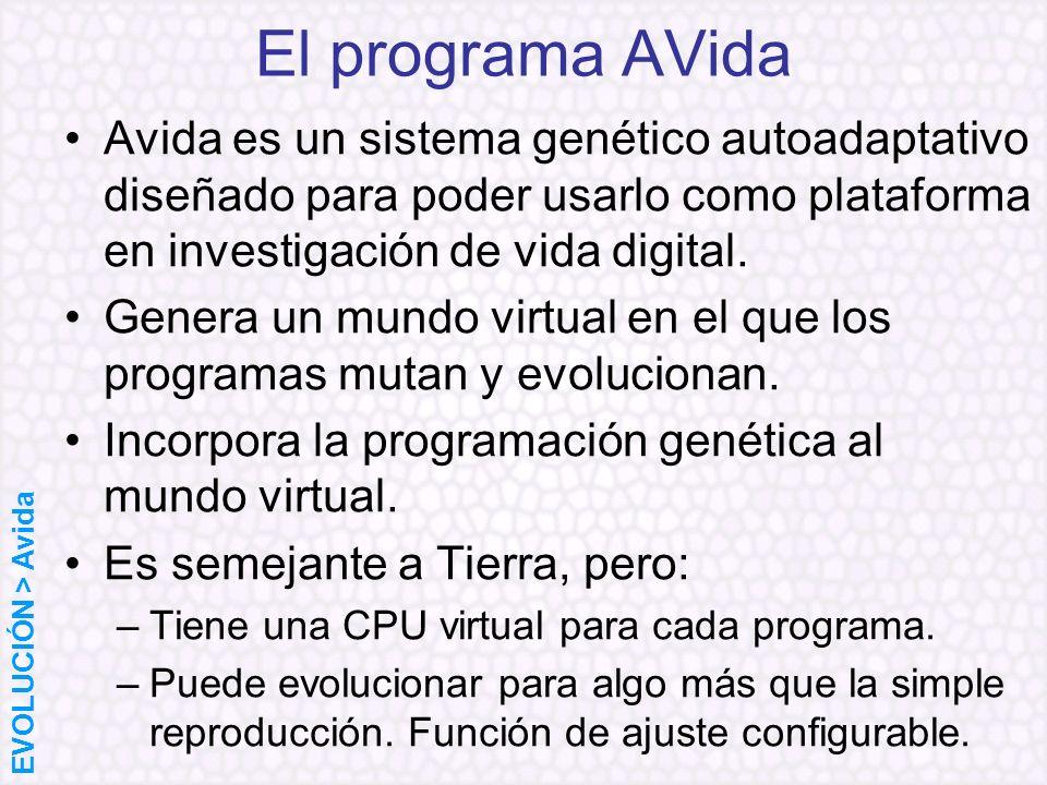 El programa AVida Avida es un sistema genético autoadaptativo diseñado para poder usarlo como plataforma en investigación de vida digital. Genera un m