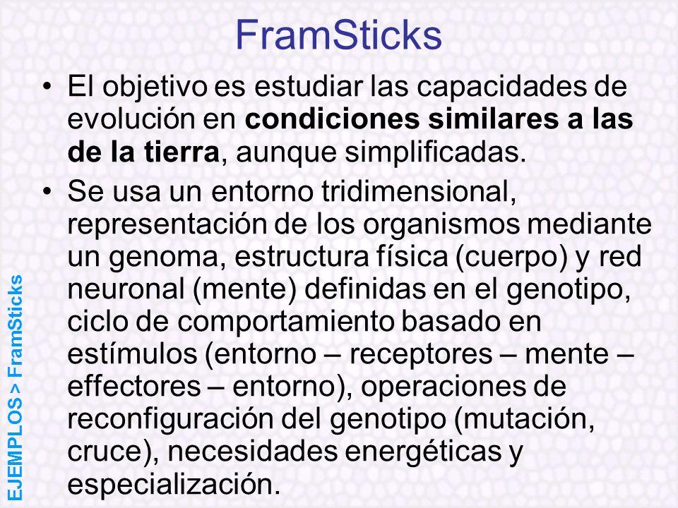 FramSticks El objetivo es estudiar las capacidades de evolución en condiciones similares a las de la tierra, aunque simplificadas. Se usa un entorno t