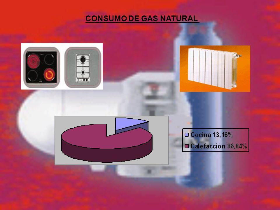 CONSUMO DE GAS NATURAL