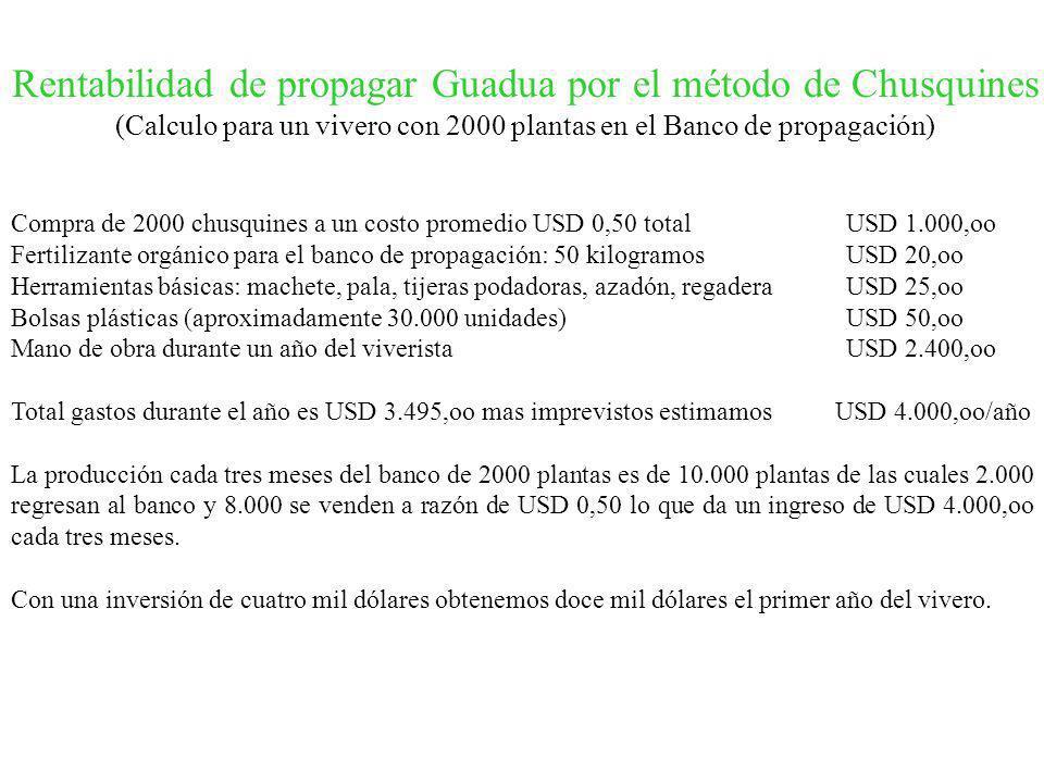 Compra de 2000 chusquines a un costo promedio USD 0,50 total USD 1.000,oo Fertilizante orgánico para el banco de propagación: 50 kilogramos USD 20,oo