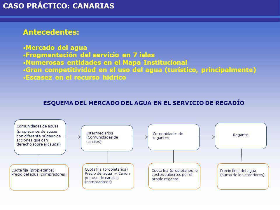 Antecedentes : Mercado del agua Fragmentación del servicio en 7 islas Numerosas entidades en el Mapa Institucional Gran competitividad en el uso del a