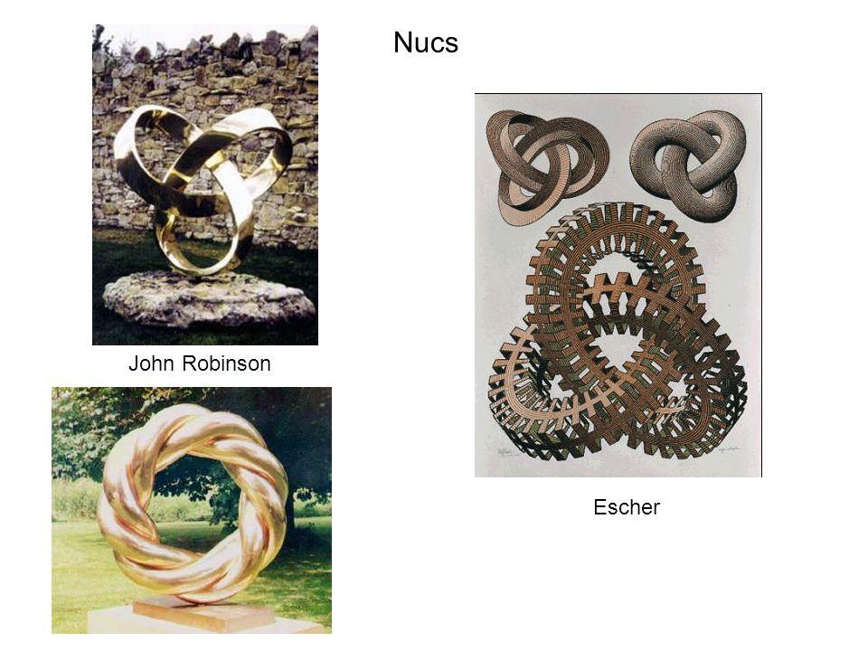 Escher John Robinson Nucs