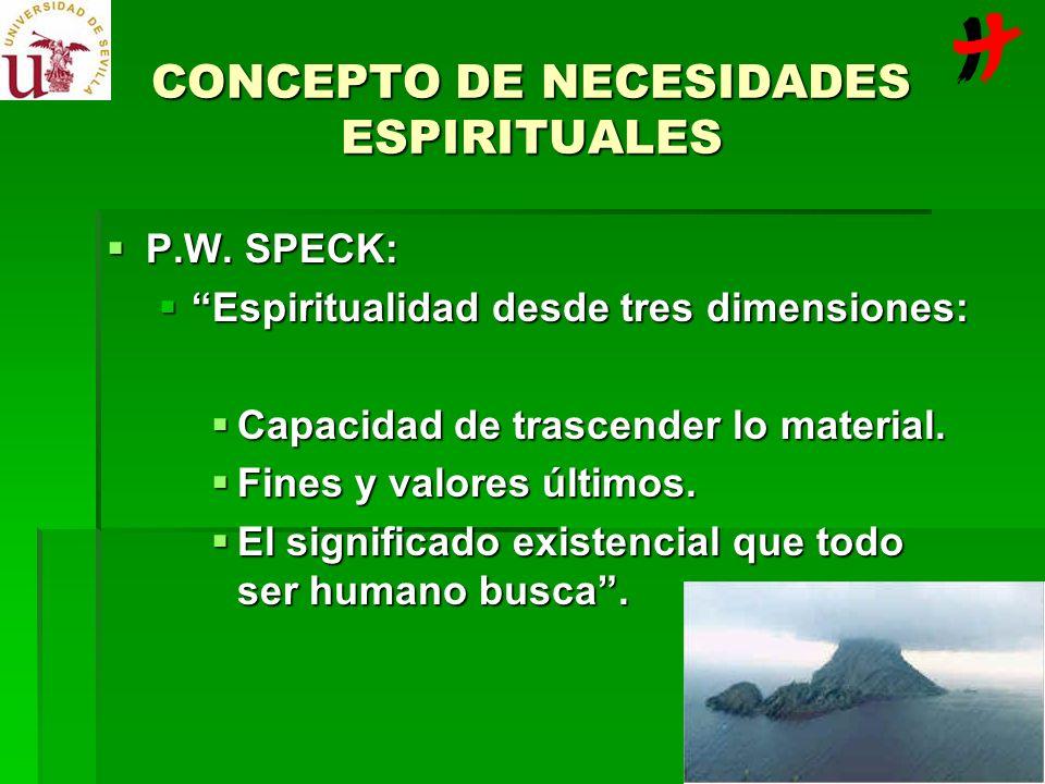 CONCEPTO DE NECESIDADES ESPIRITUALES P.W. SPECK: P.W. SPECK: Espiritualidad desde tres dimensiones: Espiritualidad desde tres dimensiones: Capacidad d