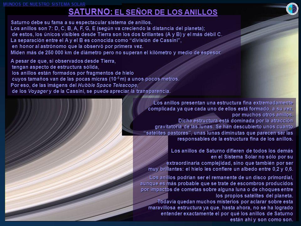 SATURNO: EL SEÑOR DE LOS ANILLOS Saturno debe su fama a su espectacular sistema de anillos. Los anillos son 7: D, C, B, A, F, G, E (según va creciendo