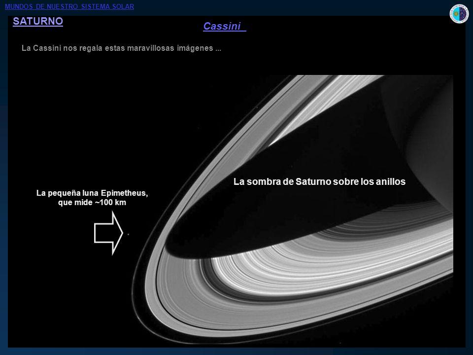 SATURNO La Cassini nos regala estas maravillosas imágenes... 300 km División de Enckle (en el anillo A) Responsable: Pan, una pequeña luna de ~ 20 km