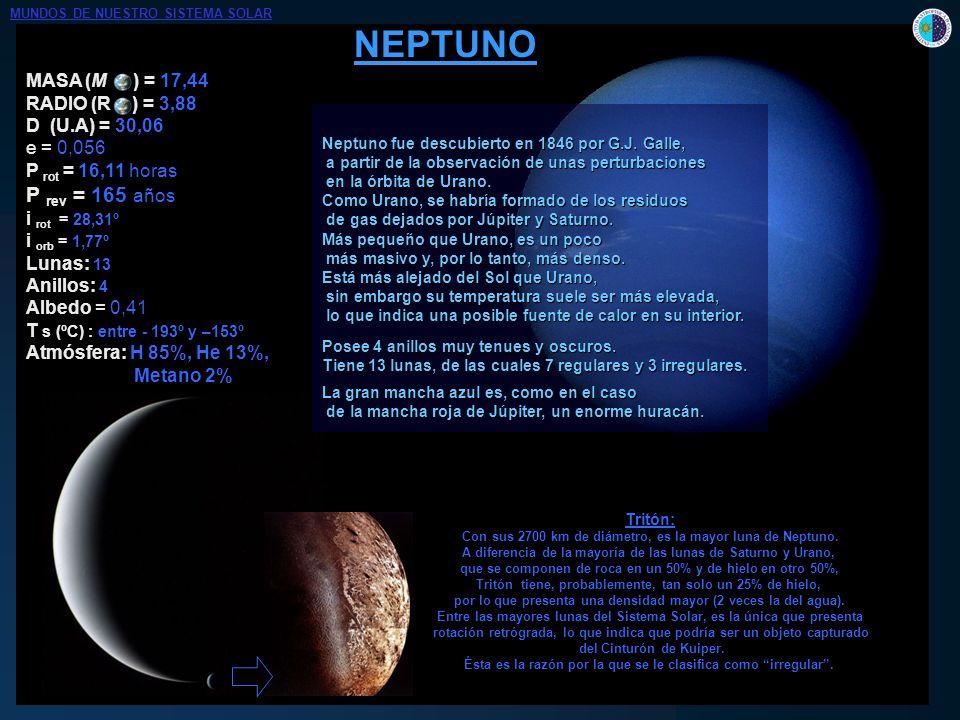 MASA (M ) = 17,44 RADIO (R ) = 3,88 D (U.A) = 30,06 e = 0,056 P rot = 16,11 horas P rev = 165 años i rot = 28,31º i orb = 1,77º Lunas: 13 Anillos: 4 A
