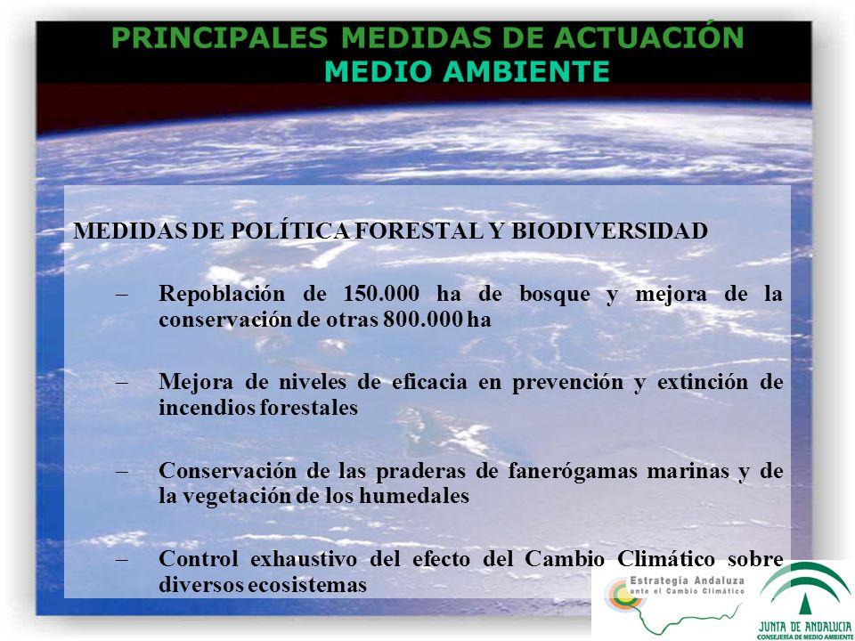 PRINCIPALES MEDIDAS DE ACTUACIÓN MEDIO AMBIENTE MEDIDAS DE POLÍTICA FORESTAL Y BIODIVERSIDAD –Repoblación de 150.000 ha de bosque y mejora de la conse