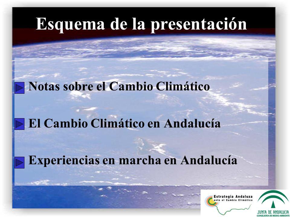 Plan Forestal Andaluz 2003-2007 Principales cifras previstas en el plan: Reforestación de 70.000 hectáreas en terrenos forestales.