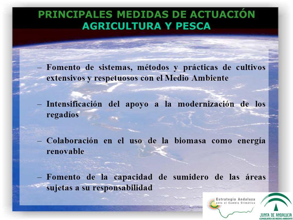 PRINCIPALES MEDIDAS DE ACTUACIÓN AGRICULTURA Y PESCA –Fomento de sistemas, métodos y prácticas de cultivos extensivos y respetuosos con el Medio Ambie