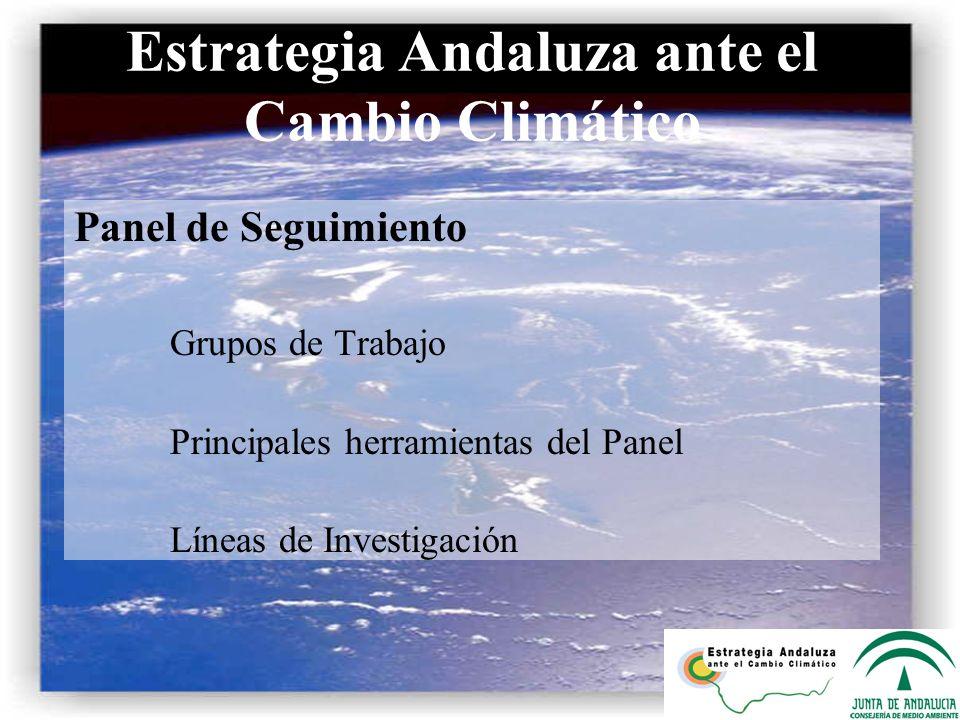 Estrategia Andaluza ante el Cambio Climático Panel de Seguimiento Grupos de Trabajo Principales herramientas del Panel Líneas de Investigación