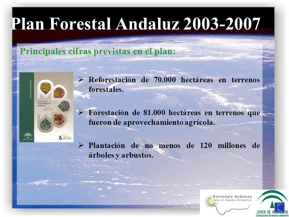 Plan Forestal Andaluz 2003-2007 Principales cifras previstas en el plan: Reforestación de 70.000 hectáreas en terrenos forestales. Forestación de 81.0