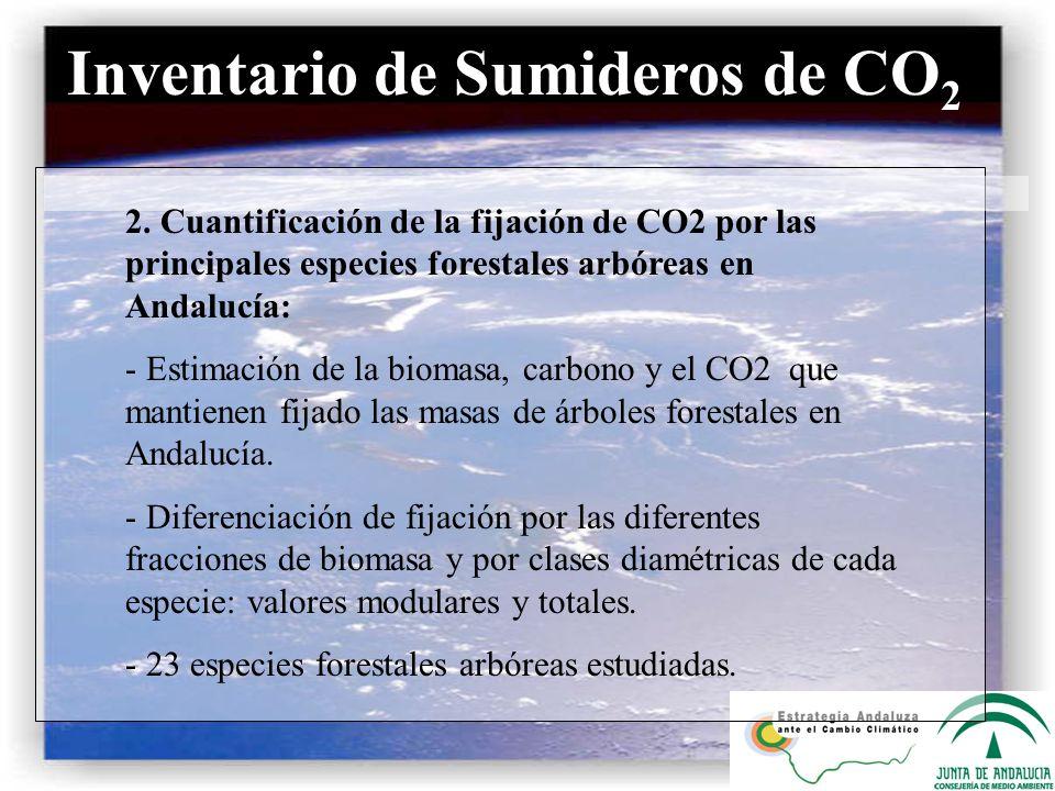 Inventario de Sumideros de CO 2 2. Cuantificación de la fijación de CO2 por las principales especies forestales arbóreas en Andalucía: - Estimación de