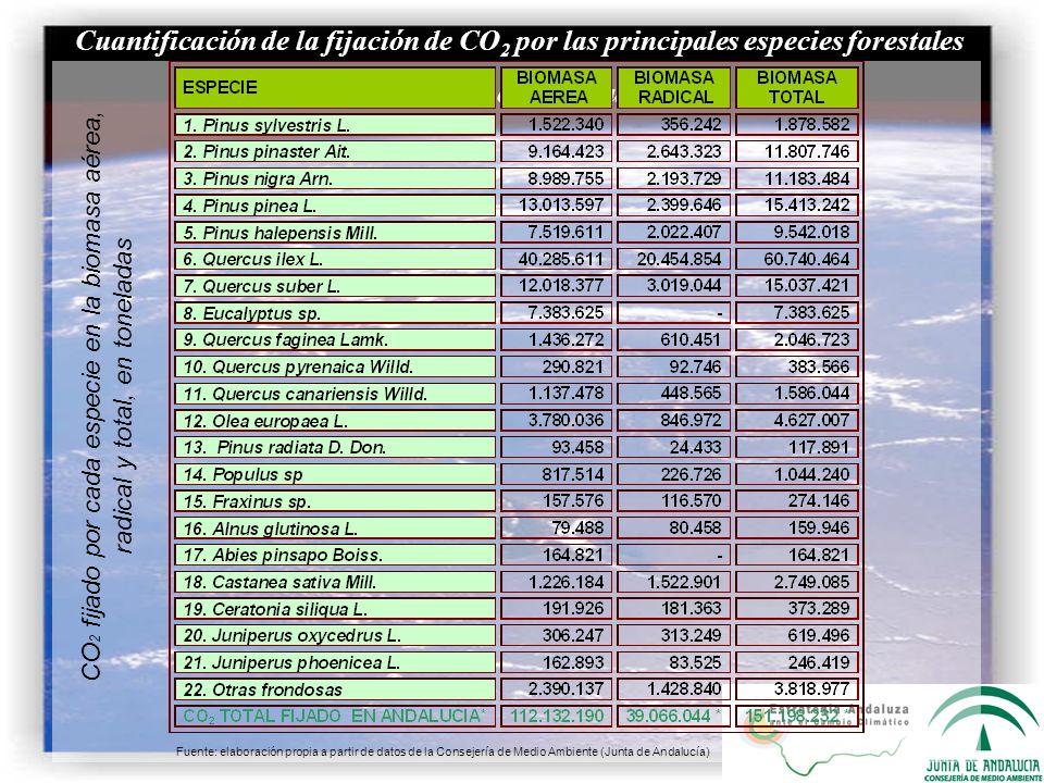 Cuantificación de la fijación de CO 2 por las principales especies forestales arbóreas en Andalucía CO 2 fijado por cada especie en la biomasa aérea,