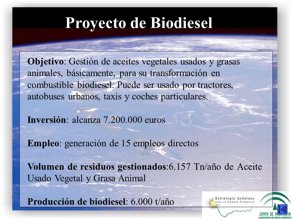 Proyecto de Biodiesel Objetivo: Gestión de aceites vegetales usados y grasas animales, básicamente, para su transformación en combustible biodiesel. P